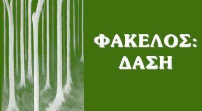 fakelos_dasi