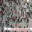 Μεγάλη αντιφασιστική διαδήλωση στο Σεράγεβο